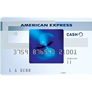 Blue Cash Everyday� Card from American Express