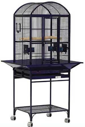 Cheap Avian Adventures Nina Playtop Bird Cage (B006P48YAI)