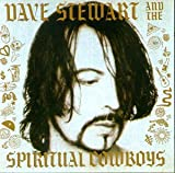 Dave Stewart & Spiritual Cowboys