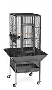 "Parkway Wrought Iron Bird Cage Size: 48.5"" H x 18"" W x 18"" D, Color: Coco"