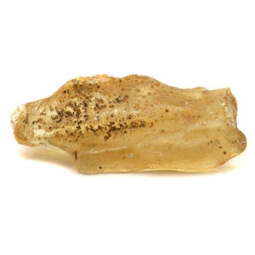 Caribbean Amber Half Polished Gemstone 16.5 gr