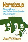 img - for Homeboys: Gangs, Drugs, and the Prison in the Barrios of Los Angeles book / textbook / text book