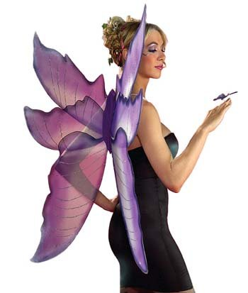 Costume Wings Purple/Silver Fairy Wings