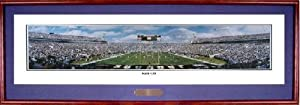 NFL Jacksonville Jaguars Stadium, Kick Off Panoramic Print Deluxe Frame by NFL