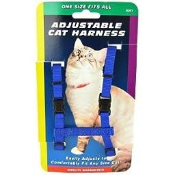 Coastal Pet Products CCP6341BLU Nylon Adjustable Figure H Cat Harness, Blue