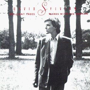 David Sylvian - Brilliant Trees & Words With The Shaman - Lyrics2You