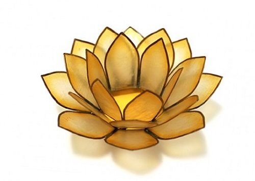 Om Gallery Capiz Shell Lotus Tea Light Holder, Sunshine