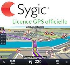 carte micro sd 4go Carte MicroSD/SD 4Go GPS Sygic pour autoradios   Europe de l'Ouest