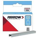 Arrow Fastener 224 Genuine P22 1/4-Inch Staples, 5,050-Pack