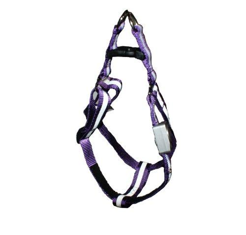 LED Beleuchtetes Hundegeschirr Violett Gr. L = 40-65cm - RBrothersTechnologie