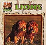 img - for Lions (Big Cats) book / textbook / text book