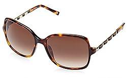 Escada Rectangular Sunglasses (Demi Brown) (SES 273|0748|58)