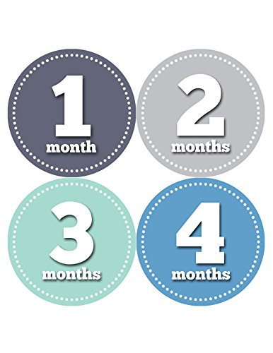 Months in Motion 061 Monthly Baby Stickers Baby Boy Month 1-12 Milestone Age