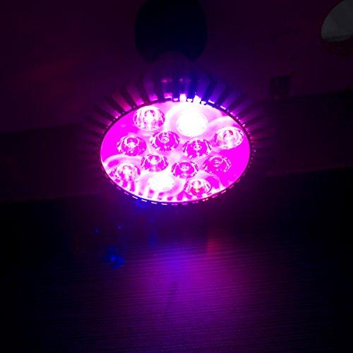 Chichinlighting® Full Spectrum 15W Par38 E27 Plant Led Grow Light Bulb For Indoor Plants ((Red 610-640 Nm, Blue 450-470 Nm)