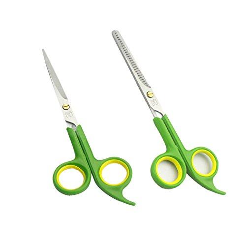 Professionnel Ciseaux à Cheveux, EgoEra 2 Pcs Inoxydable Ciseaux à Effiler/Ciseaux Couper Cheveux/Hair Scissors pour Humain/Animal(Anti-déraper Manipuler)