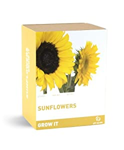 Gift Republic: Grow It. Grow Your Own Sunflowers