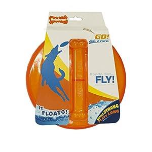 Nylabone Go Active Flying Disk