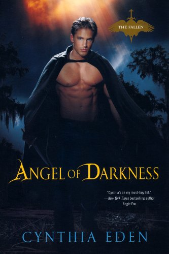 Image of Angel of Darkness (The Fallen)