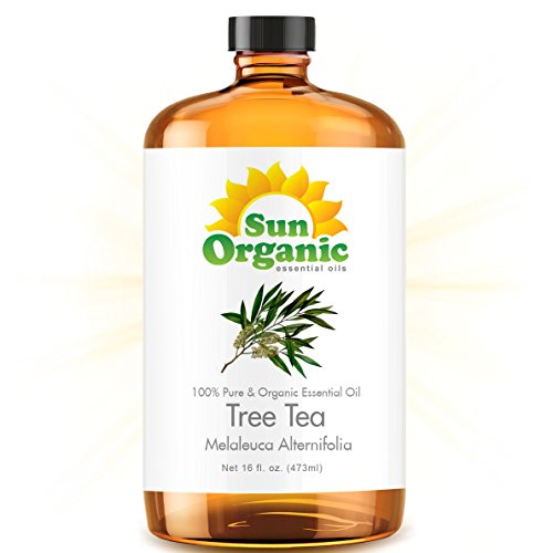 Tea Tree - Ultra 16 Ounce - Organic, 100% Pure Essential Oil (Best 16 Fl Oz / 472Ml) - Sun Organic