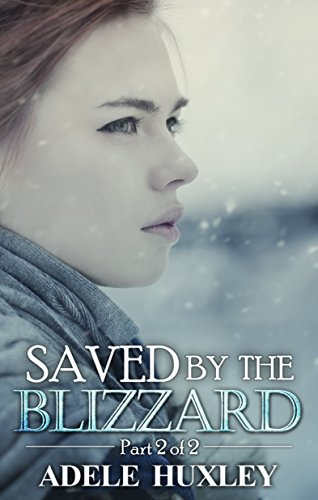Saved by the Blizzard: A romantic winter thriller (Tellure Hollow Book 2) PDF