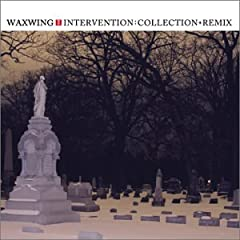 Intervention: Collection + Remix: Waxwing