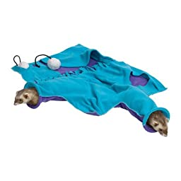 Midwest Homes for Pets Nation Accessories Busybody Blankie, Purple/Teal