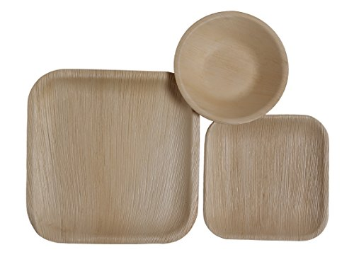 Table-To-Go-75-Piece-Palm-Leaf-Square-Dinnerware-Set