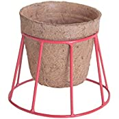 Pinwheel's Metal Coir Ruby Red Tora Tora Planter