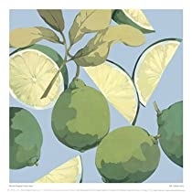 Fresh Limes Art Poster PRINT Martha Negley 11x11