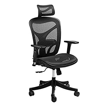 Ergonomic High Back Mesh Office Chair - SIEGES Adjustable Headrest, 3D Flip-up Arms, Back Lumbar Support Computer Desk Task Executive Chair, Black