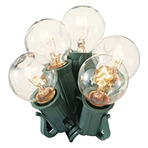 Globe Bulb String Lights Indoor : Amazon.com : Clear Globe String Lights Set of 25 G30 Bulbs Indoor / Outdoor : Outdoor ...