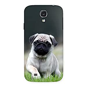 Ajay Enterprises Wowo Pug Dog Grass Multicolor Back Case Cover for Samsung Galaxy S4