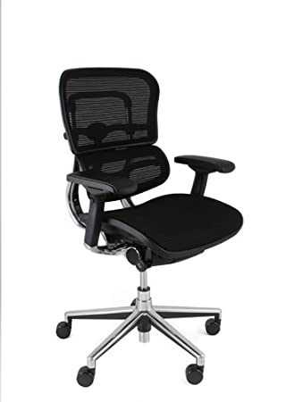 Ergohuman mesh chair without headrest