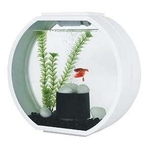 AA Aquarium Deco O Mini AA10L-OGD-WHT Aquarium