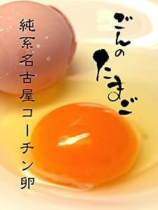 名古屋コーチン卵 / ごんのたまご 30個・化粧箱入り