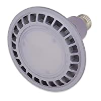 LEDwholesalers PAR38 Indoor Outdoor 16 Watt LED Flood Light Bulb, Warm White, 1313WW