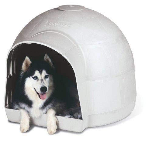 Home Depot Dog House Petmate Dogloo Kd Dog House Large