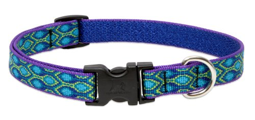 Lupine 3/4-Inch Wide Rain Song Adjustable Collar for Small to Medium Dogs, 9 to 14-Inch