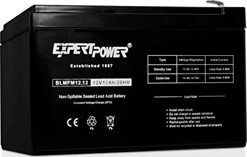 ExpertPower EXP12120 12 Volt 12 Amp Rechargeable battery