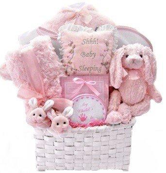 Luxury Classics Baby Girl Gift Basket