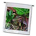 Crotons Up Close - 12 X 18 Inch Garden Flag