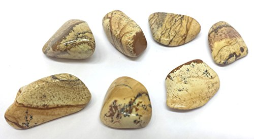 kalahari-picture-jasper-desert-stone-tumble-crystal-connect-with-earth-spirit-approx-3cm-free-postag