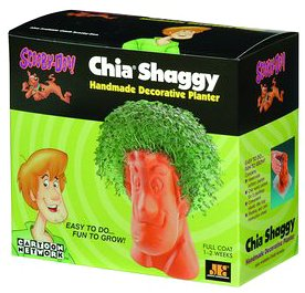 Chia Shaggy Collectable