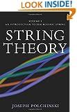 String Theory, Vol. 1 (Cambridge Monographs on Mathematical Physics)