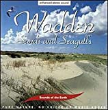 echange, troc Various Artists - Sounds of Earth: Wadden - Sands & Seagulls