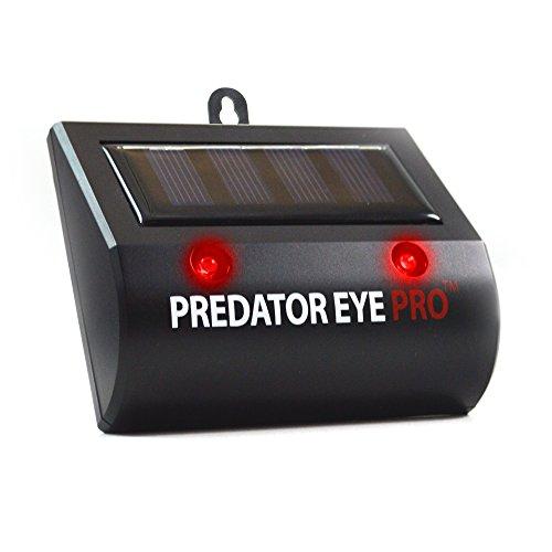 aspectek-predateur-yeux-pro-jour-et-nuit-repulsif-animaux-2-unites-eye-predator-pro