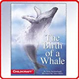 The Birth of a Whale.....(Big Book)