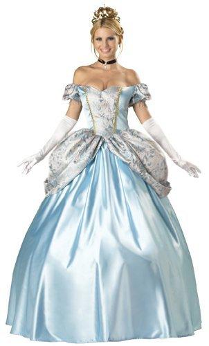 Adult Halloween Costumes Cinderella Princess