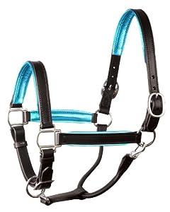 Perri's Leather Metallic Padded Leather Halter, Horse, Black/Turquoise