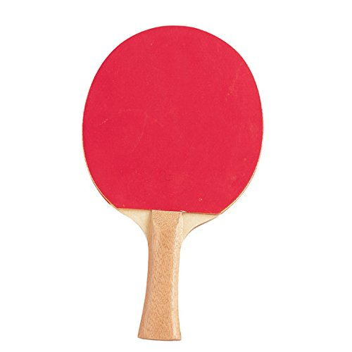 Champion Sports PN8 Table Tennis Paddle (4 Star Ping Pong Balls Champion compare prices)